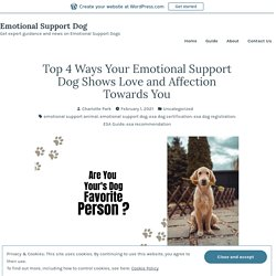 Top 4 Ways Your Emotional Support Dog Shows Love and Affection Towards You – Emotional Support Dog