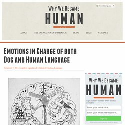 Emotions are in charge of behavior and cognition in human evolution