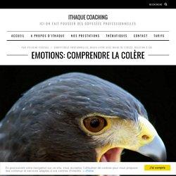 Emotions: comprendre la colère
