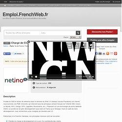 Offre d'emploi Chargé de Clientèle Web 2.0
