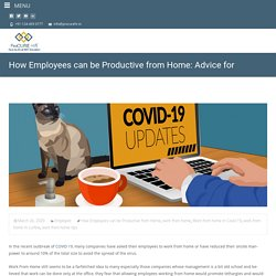 How Employees can be Productive from Home: Advice for Employers