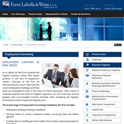 Employment Lawyers NJ, NYC & Employment Counseling