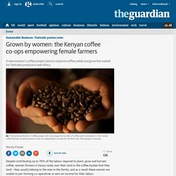 Grown by women: the Kenyan coffee co-ops empowering female farmers