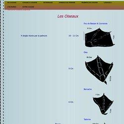 Empreintes d'Oiseaux tableau et classement par catégories
