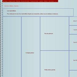 Empreintes des Mammifères tableau par catégories