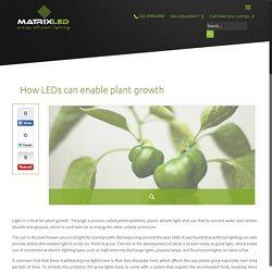 How LEDs can enable plant growth