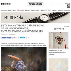 Esta Encantadora Cría De Búho Se Ha Hecho Famosa, Entrevistamos A Su Fotógrafa - Cultura Inquieta