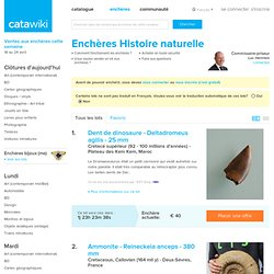 Enchères histoire naturelle - Fossiles et minéraux à vendre ou à acheter aux enchères Catawiki