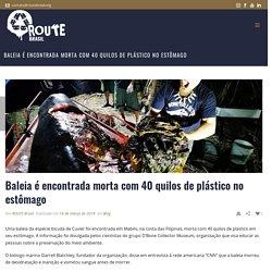 Baleia é encontrada morta com 40 quilos de plástico no estômago - ROUTE Brasil