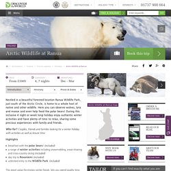 Encounter Arctic Wildlife at Ranua Wildlife Park in Finland this winter - Discover the World