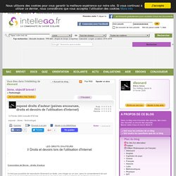 exposé droits d'auteur (peines encourues, droits et devoirs de l'utilisation d'internet)