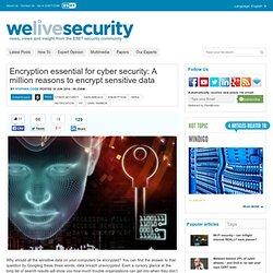 Encryption essential for cyber security: A million reasons to encrypt sensitive data.