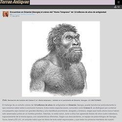 """Encuentran en Dmanisi (Georgia) el cráneo del """"Homo Temprano"""" de 1,8 millones de años de antigüedad – Arqueología, Historia Antigua y Medieval - Terrae Antiqvae"""