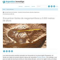 Encuentran fósiles de megamamíferos a 3.500 metros de altura