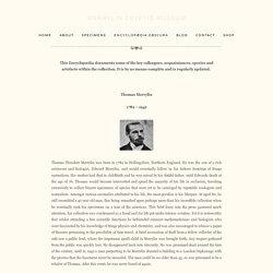 Encyclopædia Obscura — Merrylin Cryptid Museum