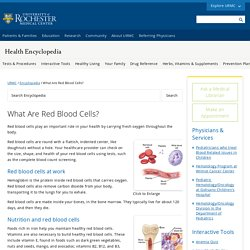 What Are Red Blood Cells? - Health Encyclopedia - University of Rochester Medical Center