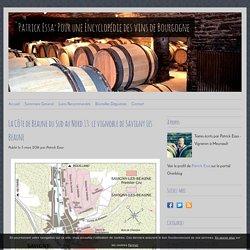 La Côte de Beaune du Sud au Nord 13: le vignoble de Savigny Les Beaune - Patrick Essa: Pour une Encyclopédie des vins de Bourgogne