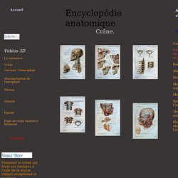 Encyclopedie anatomique humaine,Anatomical human encyclopedia
