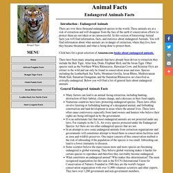 ENDANGERED ANIMAL FACTS