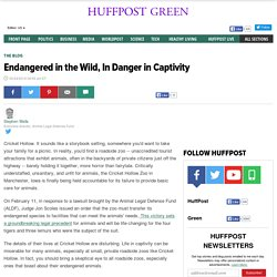 Endangered in the Wild, In Danger in Captivity