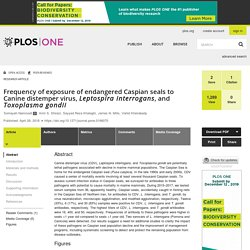 PLOS 26/04/18 Frequency of exposure of endangered Caspian seals to Canine distemper virus, Leptospira interrogans, and Toxoplasma gondii
