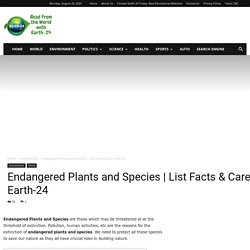Environmentalist Blog- Earth-24