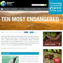 Endangered Species Foundation
