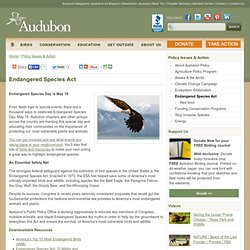 National Audubon Society Policy Issues & Action