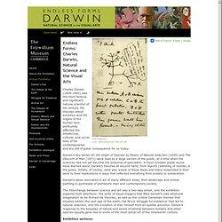 Darwin Endless Forms » Virtual Exhibition