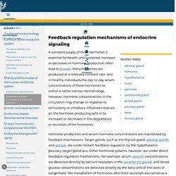Description, Function, Glands, & Hormones