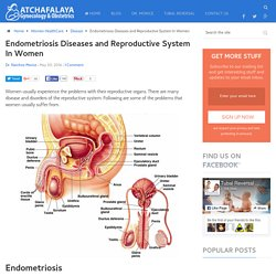 Endometriosis Diseases & Reproductive System In Women
