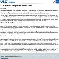 COVID-19: also a systemic endotheliitis – University Hospital Zurich