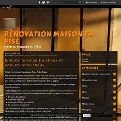 Enduits terre-paille-chaux et enduits terre-chaux - Rénovation Maison en Pisé
