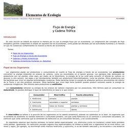 Flujo energético y Cadenas tróficas
