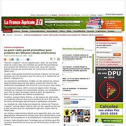 FRANCE AGRICOLE 08/01/08 Le panic raide paraît prometteur pour produire de l'éthanol (étude américaine)