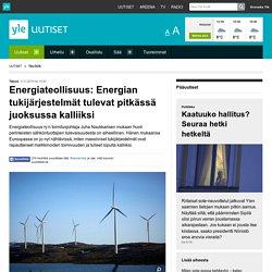 Energiateollisuus: Energian tukijärjestelmät tulevat pitkässä juoksussa kalli...