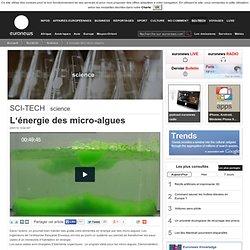 L'énergie des micro-algues