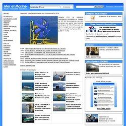 Energie - Offshore