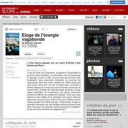 Eloge de l'énergie vagabonde - Sylvain Tesson - Livre
