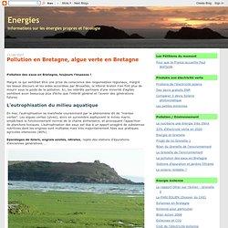 Pollution en Bretagne, algue verte en Bretagne