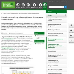 Energieverbrauch nach Energieträgern, Sektoren und Anwendungen