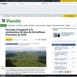 Des pays s'engagent à la restauration de plus de 60 millions d'hectares de forêt