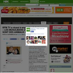BFM TV a réussi à engendrer la haine : « LES MUSULMANS et LES ARABES SONT DES ANIMAUX ! »