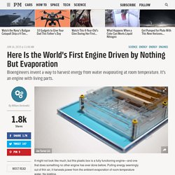 Here Is the World's First Engine Driven by Nothing But Evaporation
