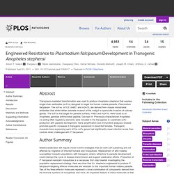 PLOS 21/04/11 Engineered Resistance to Plasmodium falciparum Development in Transgenic Anopheles stephensi