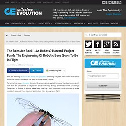 The Bees Are Back…As Robots? Harvard Project Funds The Engineering Of Robotic Bees Soon To Be In Flight