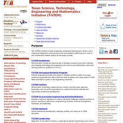Texas Science, Technology, Engineering and Mathematics Initiative (T-STEM)