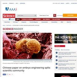 Chinese paper on embryo engineering splits scientific community