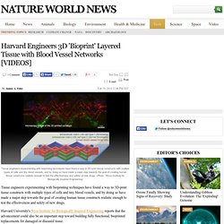 Harvard Engineers 3D 'Bioprint' Layered Tissue with Blood Vessel Networks [VIDEOS] : Tech