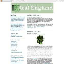 Real England - The Battle Against The Bland